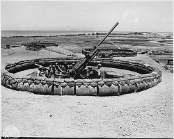 6th Army (Field Artillery Rgt.):