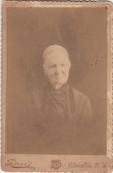 W. S. Davis, photographer, of Ellenville, NY