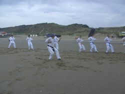 kokutsu-dachi seiken-uchi-uke