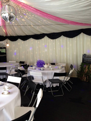 Black and Pink marquee colour scheme