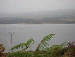 Shoreline Near Audrey's Home