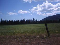View of 20 Acre Parcel