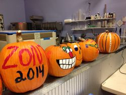 Pumpkin Painting event