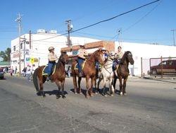 Equestrian Trail Patrol Team