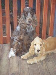 Lara & George