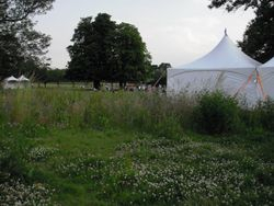 Marquee in Ray Park, Woodford Green