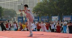 Master Wang Hai Jun Jiaozuo 2013