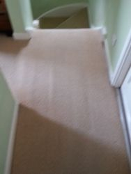 Landing Carpet
