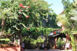 Vallarta Botanica Gardens