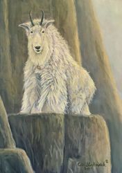 "Living on the Edge - Mountain Goat (5 by 7"" acrylic on masonite) In Private Collection"