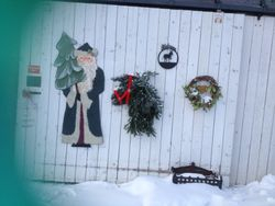 PrimRose Donkey Sanctuary decorated for Christmas