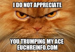 I do not appreciate you trumping my ace.