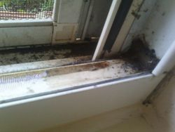 dirty window seal- before