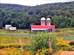 Quebec Countryside