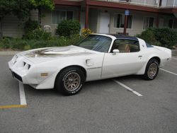 81 Pontiac Trans Am