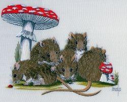 Many mice!