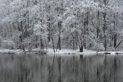 Pine Lake, Late March Snow 3