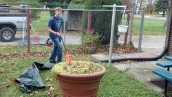 Fall Leaf Clean Up