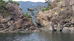 pierced rock codfish Bay
