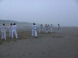 gevechts training