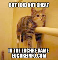 ...But I did not cheat in the Euchre game.