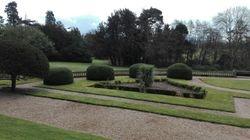 The Mature Gardens