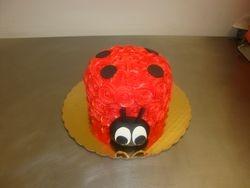 6 inch lady bug cake $45