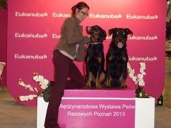 10 m.o. Jun Winner of Poland with Winner of Poland, BOB GEORGIUM SIDUS Astra Canina