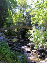 Bridge over Ashland Creek
