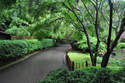 Walkway, Portland Japanese Garden
