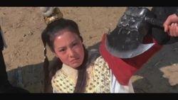 Lily Ho as Yang Wen-kuan