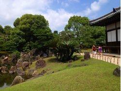 Ninomaru Garden with toropical Cycads
