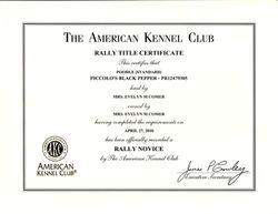 Pepper RN title certificate