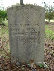 John Canady Gurganus Gravestone husband of Missouri Manning