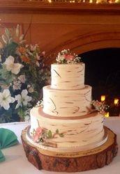 Birch Slice cake #1