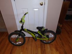 """Trek Jet Bike- 16"""" - $100"""