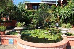 Vallarta Botanica Gardens - pond