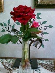Laura Beth's Roses
