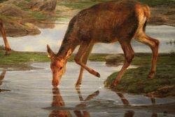Rosa Bonheur, Family of Deer, 1865, Ringling Museum