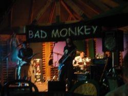 GRC Monkey Band