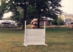 Lady working in Open. 1993.