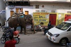 Udaipur, India 12