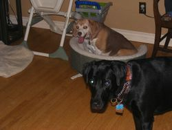Sami and Dakota