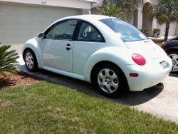Sharon ---------Volkswagen Beetle