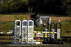 Triple bar @ FENCE HT 2013