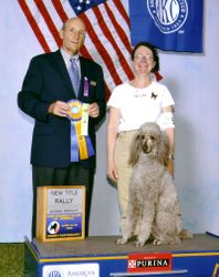 Amber with new RA title at PCA National Specialty.  4/22/08.