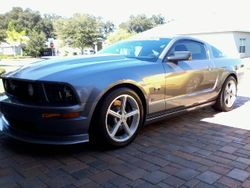 Michael B.---------Ford Mustang