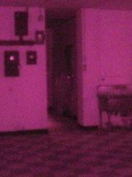 Infrared photo #2 unenhanced