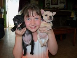 Brooke playing with pups.