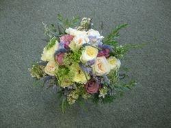 David Austin & Garden Roses